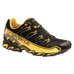 Skriešanas apavi Raptor Gore-Tex
