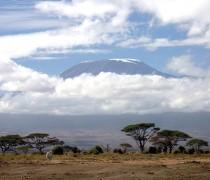 Tanzānija. Kilimandžāro 2018