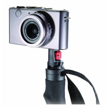 Fotonūja Photosystem Alu SL