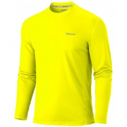 Windridge LS Bright lichen